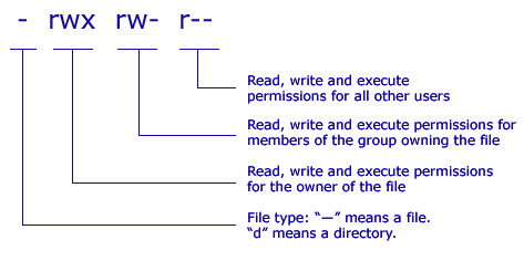 Linux write to file